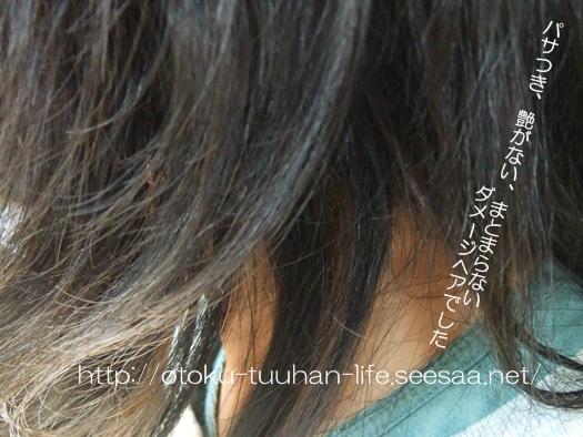 ダメージヘアに本当に効くシャンプー.JPG